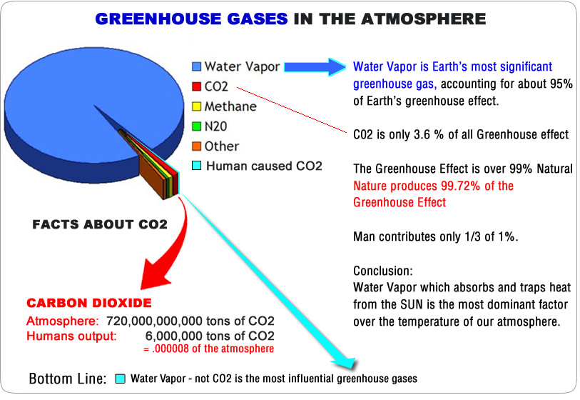 the water vapor carbon dioxide and methane as main causes for the greenhouse effect